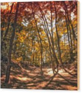 Autumn In The Dunes Wood Print