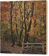 Autumn In The Rambles Wood Print