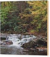 Autumn In The Smokies Wood Print by Andrew Soundarajan