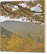 Autumn In The Smokies Wood Print by Michael Peychich