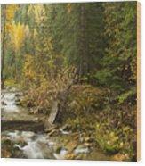 Autumn In The St Joe Wood Print