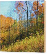 Autumn In The Tennessee Hills Wood Print