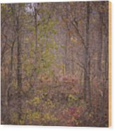 autumn In The Woos Wood Print