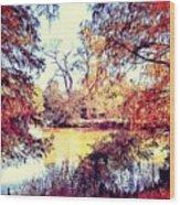 Autumn Island Wood Print