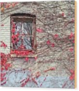 Autumn Ivy Wood Print