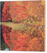 Autumn Lake Scenery Wood Print