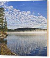 Autumn Lake Shore With Fog Wood Print by Elena Elisseeva