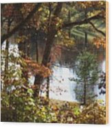 Autumn Lake With Oil Painting Effect Wood Print