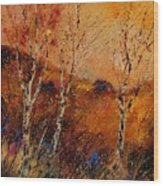 Autumn Landscape 45 Wood Print