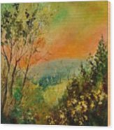 Autumn Landscape 5698 Wood Print