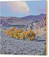 Autumn Landscape In Northern Nevada. Wood Print