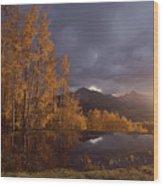 Autumn Landscape Near Telluride Wood Print