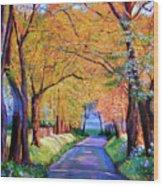 Autumn Lane Wood Print by David Lloyd Glover