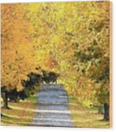 Autumn Lane Wood Print