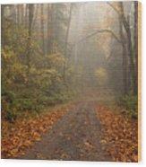 Autumn Lane Wood Print by Mike  Dawson