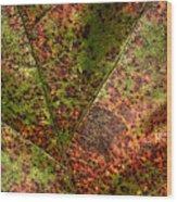 Autumn Leaf Detail Wood Print