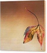 Autumn Leaf Fallen Wood Print