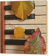 Autumn Leaf Trio On Piano Wood Print