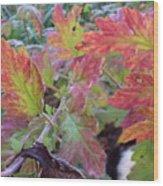 Autumn Leafs Wood Print