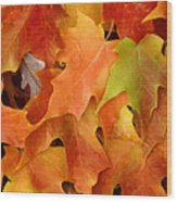 Autumn Leaves - Foliage Wood Print