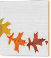 Autumn Leaves 1 Wood Print
