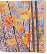 Autumn Leaves 2 Pdae Wood Print