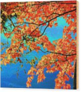 Autumn Leaves 8 Wood Print