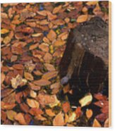 Autumn Leaves And Tree Stump Wood Print