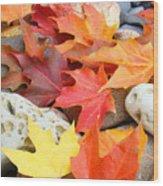 Autumn Leaves Art Print Coastal Fossil Rocks Baslee Troutman Wood Print