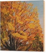Autumn Leaves At High Cliff Wood Print by Daniel W Green