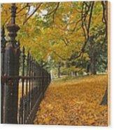 Autumn Leaves At Lafayette Park Wood Print