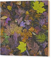 Autumn Leaves At Side Of Road Wood Print