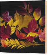Autumn Leaves Wood Print by Barry C Donovan