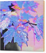 Autumn Leaves In Blue Wood Print