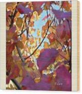 Autumn Leaves In Blue Sky Wood Print