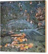 Autumn Leaves In Waterfall Wood Print
