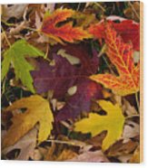 Autumn Leaves Wood Print
