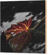 Autumn Leaves... Wood Print