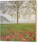Autumn Leaves Near To Far Super High Resolution Wood Print