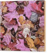 Autumn Leaves On The Forest Floor Wood Print