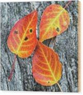 Autumn Leaves On Tree Bark Wood Print