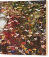 Autumn Leaves Reflections Wood Print