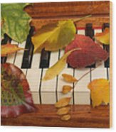 Autumn Leaves Tickle The Ivories Wood Print