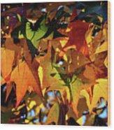 Autumn Leaves2 Wood Print