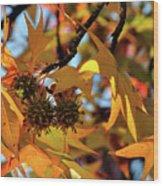 Autumn Leaves4 Wood Print