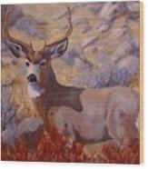 Autumn Majesty Wood Print by Debra Mickelson
