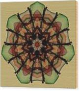 Autumn Mandala Wood Print