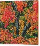 Autumn Maple Bark Wood Print