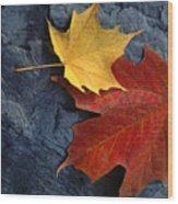 Autumn Maple Leaf Pair On Moody Rock Wood Print