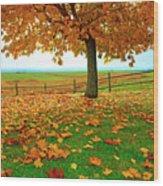 Autumn Maple Tree And Leaves Wood Print
